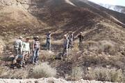 آتش ۲۵ هکتار از پارک ملی تندوره را به خاکستر بدل کرد