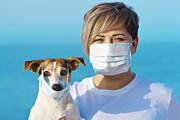 حیوانات میتوانند منبع کروناویروس باشند