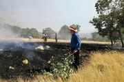 جدال داس و آتش در فصل درو