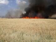 خطای انسانی عامل اصلی آتشسوزی در مراتع اصفهان است
