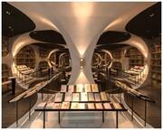 تونل چینی با دیوارهایی از کتاب