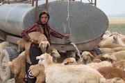 اجرای ۱۰ پروژه آبرسانی به سامانههای عشایری خراسان شمالی
