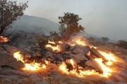 آتشسوزی در ۱۳۵ هکتار از مراتع علیآباد نیزار