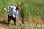 محرومیت ۱۷۶ هزار خانوار روستایی خراسان رضوی از بیمه
