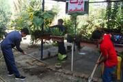 راهاندازی مزرعه توسط دانشآموزان در تابستان | جزئیات اجرای طرح «مزرعه تابستانی من»