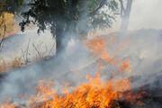 آتش بیمسئولیتی و بیتوجهی بر پیکر زخمی زاگرس