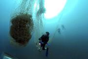 تورهای سرگردان بلای جان ماهیها میشوند