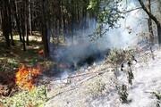 آتشسوزی در فضای سبز و مزارع کشاورزی افزایش یافت