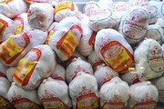 توزیع روزانه ۲۵ تن مرغ منجمد با قیمت مصوب