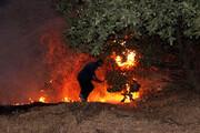 فرماندار پاوه جزییاتی از جان باختن سه نفر در اطفاء حریق مراتع را تشریح کرد