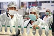 ۴۰۶ کارگر واحدهای تولیدی و صنعتی زنجان به کرونا مبتلا شدند