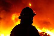 آتشسوزی علفهای هرز خیابان زرگری شیراز حاشیهساز شد