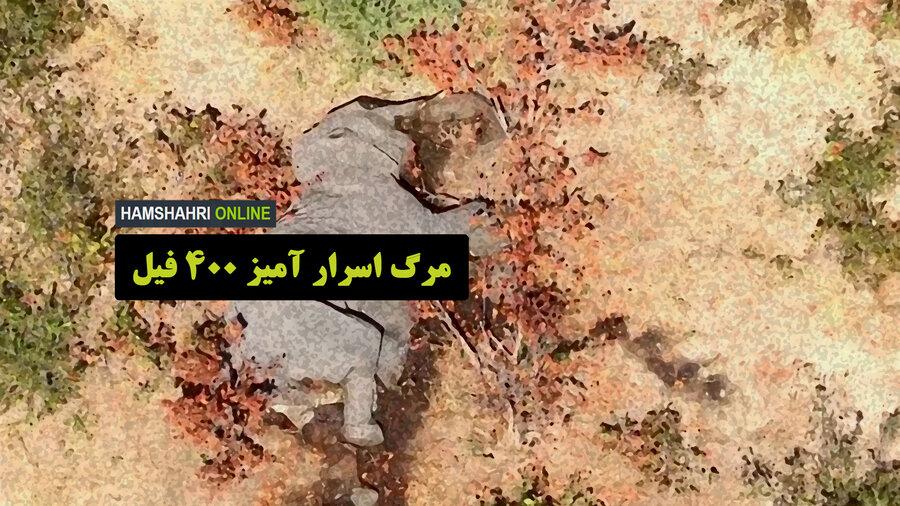 مرگ فیل ها