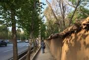 نارضایتی مردم از تغییر ناگهانی نام یکی از مشهورترین خیابانهای شیراز