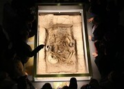 فیلم | کشف گور ۳ هزار ساله در سگزآباد قزوین