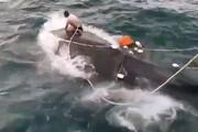 فیلم | لحظه نجات یک نهنگ بالندار توسط ماهیگیران کنارک