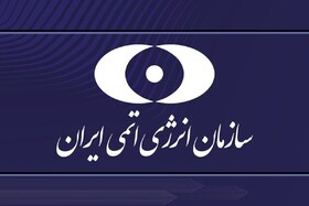 واکنش صریح سازمان انرژی اتمی به ادعای نماینده دلواپس درباره ترور شهید فخری زاده