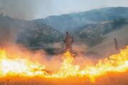 ۲۰ آتشسوزی در یک ماه | ۵۰ هکتار از مراتع همدان طعمه حریق شد
