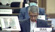 لحظه برداشتن عکس سردار سلیمانی در سازمان ملل