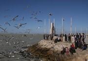 ساخت ۲۷ اسکله چندمنظوره در سواحل مازندرانی خزر نهایی شد