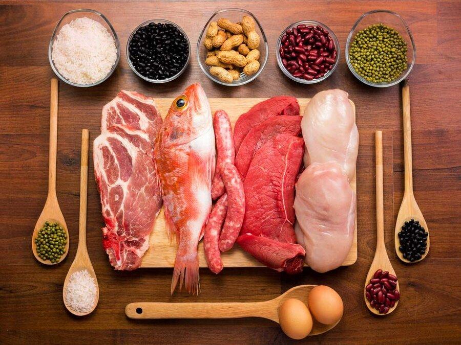 مواد غذایی پروتئیندار