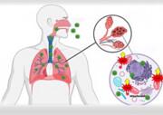 تشخیص زودهنگام کرونا با دستگاه اندازه گیری اکسیژن در خلط