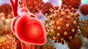 ویروس کرونا میتواند به قلب آسیب بزند | اکوی قلب نیمی از بیماران غیرطبیعی است