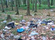 دفن روزانه ۸۰۰ تن زباله در محیط زیست سراوان
