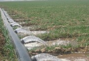 چهارمحال و بختیاری | تجهیز ۲ هزار هکتار از اراضی کشاورزی به سیستم آبیاری نوین