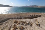 کشف فسیلهای جانوری قدیمی در کوههای روستای رودیک