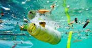 افزایش ۳ برابری زبالههای پلاستیکی در اقیانوسها فقط تا ۲۰ سال آینده | ۶۰۰ میلیون تن پلاستیک با دریاها چه میکند؟
