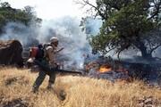 ۲ هزار هکتار از اراضی بیجار در آتش سوخت