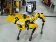 سگ های رباتیک در فورد مشغول به کار شدند