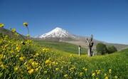 پایان ماجرا؛ اسناد قله دماوند به نام منابع طبیعی صادر شد