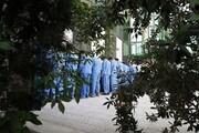 ۱۱ مجرم تحت تعقیب در هویزه دستگیر شدند