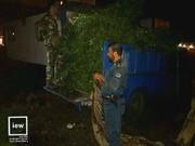 محموله قاچاق حاوی ۱۵ هزار شاخه چلم در بندرگز کشف شد