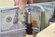 تصمیم مهم بانک مرکزی برای بازار ارز | فروش ارز پتروشیمیها در صرافیها آزاد شد