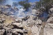 آتشسوزی جنگلهای کوهدشت پس از ۳ روز مهار شد