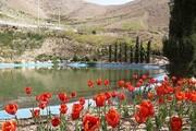 باغ گل و گیاهان دارویی به ارتفاعات لتمان کن میآید