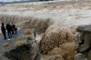 فیلم   مزارع کشاورزان روستاهای قلعهگنج زیر آب رفت
