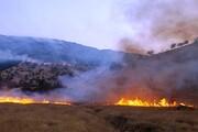 دستگیری ۳۰ نفر از متهمان آتشافروزی در جنگلها و مراتع
