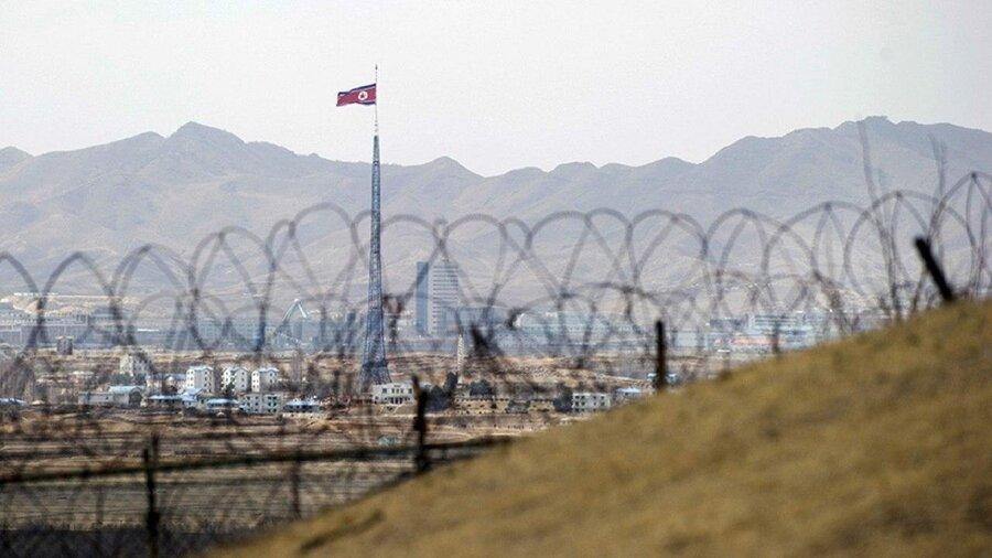 فنس کشی کره شمالی چین