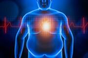 افراد چاق و دیابتی ماهانه رصد شوند | خودسرانه رژیم نگیرید