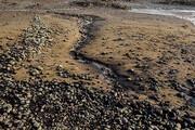 تشکیل پرونده قضایی برای آلودگی ساحل گناوه