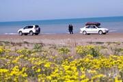 ۴٠٠ کیلومتر از حریم دریای خزر آزاد شد