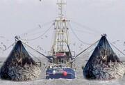 اختصاص ۲۸ میلیارد لیتر سوخت یارانهای به کشتیهای صیادی خارجی
