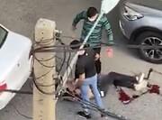دستگیری عاملان تیراندازی خونین در سعادتآباد