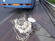 فوت ۵ نفر و ۱۴ مصدوم در تصادف اتوبوس با کامیون در رودان