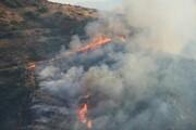 افزایش ۴۰ درصدی آتشسوزی اراضی ملی