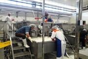 راهاندازی خط تولید پنیر پیتزا در شهرکرد